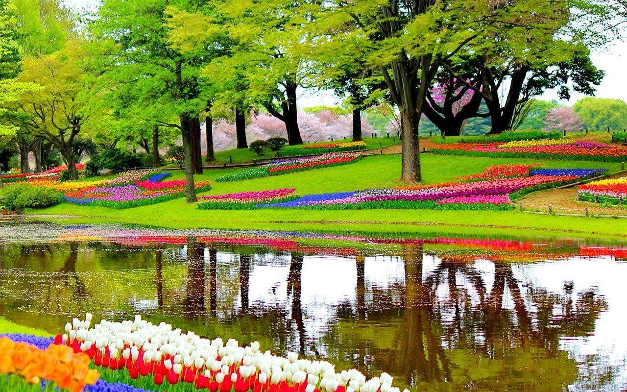 A világ legnagyobb virágos kertje 1