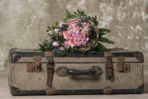 Tassivirág Blog 5